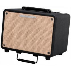 Ibanez T30 Troubadour wzmacniacz do gitary akustycznej i mikrofonu