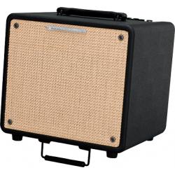 IBANEZ T80 N Troubadour wzmacniacz do gitary akustycznej i mikrofonu