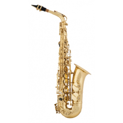 Arnolds & Sons AAS-100 alto...
