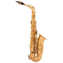Arnolds & Sons AAS-110 alto...