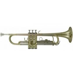 ROY BENSON TR-202 Trumpet B