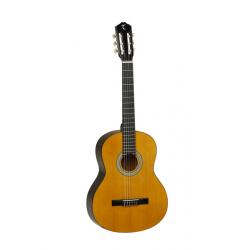 TANGLEWOOD DBT 12 NAT gitara klasyczna w rozmiarze 1/2
