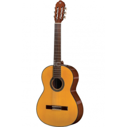 VGS Student 4/4 Gitara...