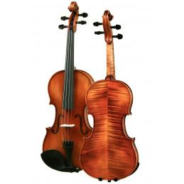 copy of Violin Harald...