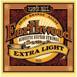 ERNIE BALL 2006 acoustic...