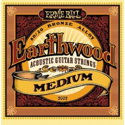 ERNIE BALL 2002 acoustic...
