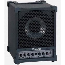 Roland CM-30 monitor PA