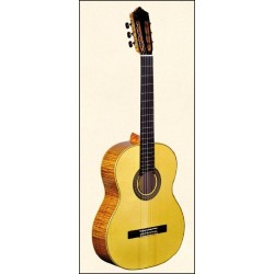 LUTHIER 5S classical guitar