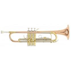ROY BENSON TR-202G Trumpet B