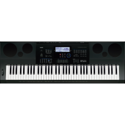 Casio WK-6600 keyboard