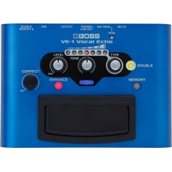 BOSS VE 1 vocal processor...