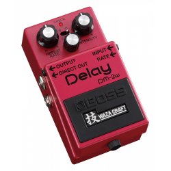 BOSS DM 2W DELAY guitar effect