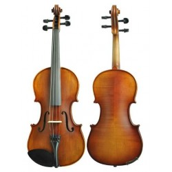 SALVATINI ASV-110 RB violin...