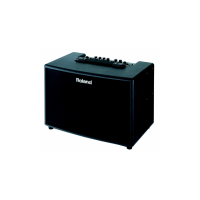 Amplifiers Roland