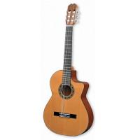 Gitary elektro-klasyczne ( elektroklasyczne )